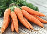 морковь гарнир
